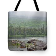 Sandy Stream Pond Tote Bag