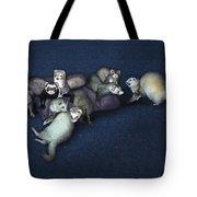 Sandy's Ferrets Tote Bag