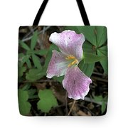 Sanford Spring Tote Bag