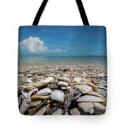 Sanibel Island Sea Shell Fort Myers Florida Broken Shells Tote Bag