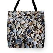 Sanibel Island Seashells I Tote Bag