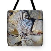 Sanibel Island Seashells Iv Tote Bag