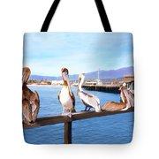 Santa Barbara Pelicans Tote Bag