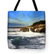 Santa Cruz Coastline Tote Bag