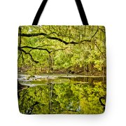 Santa Fe River Tote Bag