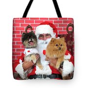 Santa Paws With Two Dogs Tote Bag
