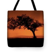 Santa Ynez Oak Tree Tote Bag