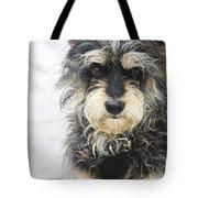 Santorini Dog Tote Bag