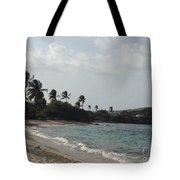 Sapphire Palms Tote Bag