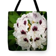 Sappho Rhododendron Tote Bag