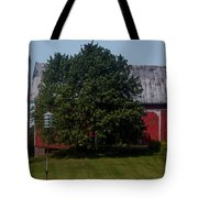 Saranac Michigan Tote Bag
