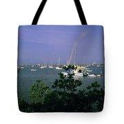 Sarasota Bay Harbor Tote Bag