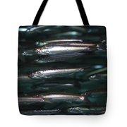 Sardine Tote Bag