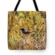 Sardinian Warbler Tote Bag