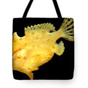 Sargassum Anglerfish Tote Bag