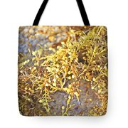 Sargassum Seaweed Tote Bag