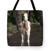 Sassy Filly Tote Bag