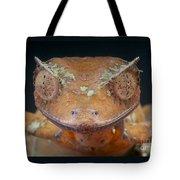 Satanic Leaf-tailed Gecko Tote Bag
