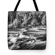 Sauble Falls Autumn Evening 3 - Paint Bw Tote Bag