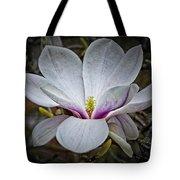 Saucer Magnolia - Magnolia Soulangeana Tote Bag