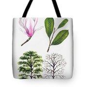 Saucer Magnolia Tote Bag