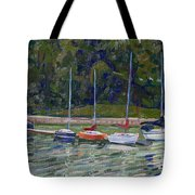 Saugeen Sails Tote Bag