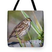 Savanah Sparrow Tote Bag