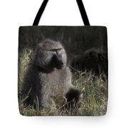 Savannah Olive Baboon  Tote Bag
