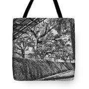 Savannah Perspective - Black And White Tote Bag