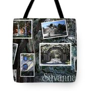 Savannah Scenes Collage Tote Bag