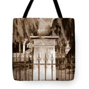 Savannah Sepia - Broken Tote Bag