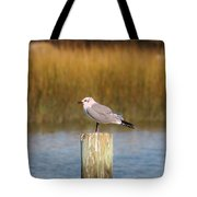 Savannah Shore Bird Tote Bag