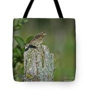 Savannah Sparrow.. Tote Bag
