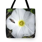 Sawfly On A Beach Morning Glory Flower Tote Bag