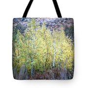 Sawtooth National Forest 2 Tote Bag