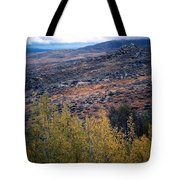 Sawtooth National Forest 1 Tote Bag