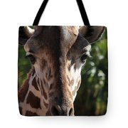 Say Cheese Card Tote Bag