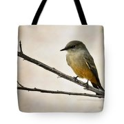 Say's Phoebe  Tote Bag