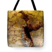 Scar Of Cordoba Tote Bag
