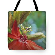 Scarlet Flame Passiflora  Tote Bag