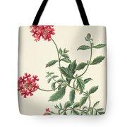 Scarlet Flowered Vervain Tote Bag