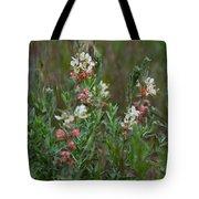 Scarlet Gaura Tote Bag