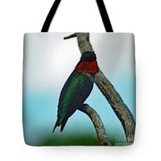 Scarlet Gorget - Ruby-throated Hummingbird Tote Bag