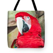 Scarlet Macaw Face Tote Bag