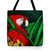 Scarlet Macaw Head Study Tote Bag