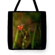 Scarlet Milkweed And Butterfly Tote Bag