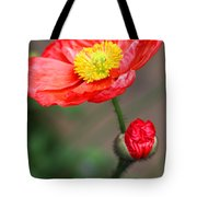 Scarlet Promise Tote Bag