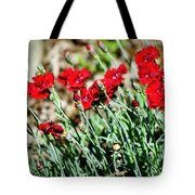 Scarlet Red Dianthus Tote Bag