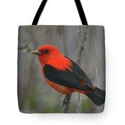 Scarlet Tanager On Stalk Tote Bag
