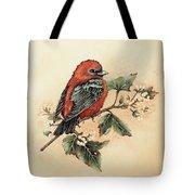 Scarlet Tanager - Vintage Tote Bag